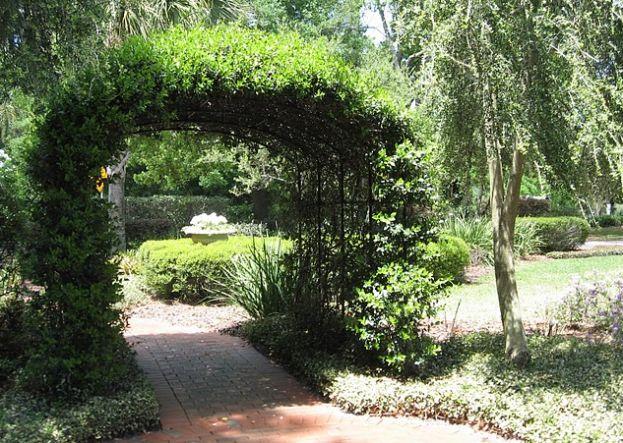 Florida Federation Of Garden Clubs - Home